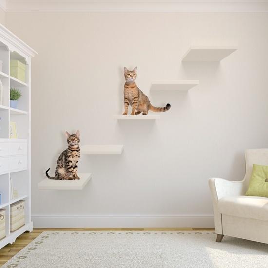 how to keep cat away from bedroom door